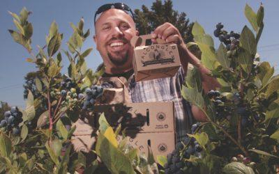 paul falcon blueberries credit rob kruyt.png  0x500 q95 autocrop crop smart subsampling 2 upscale 1 400x250 - Blog