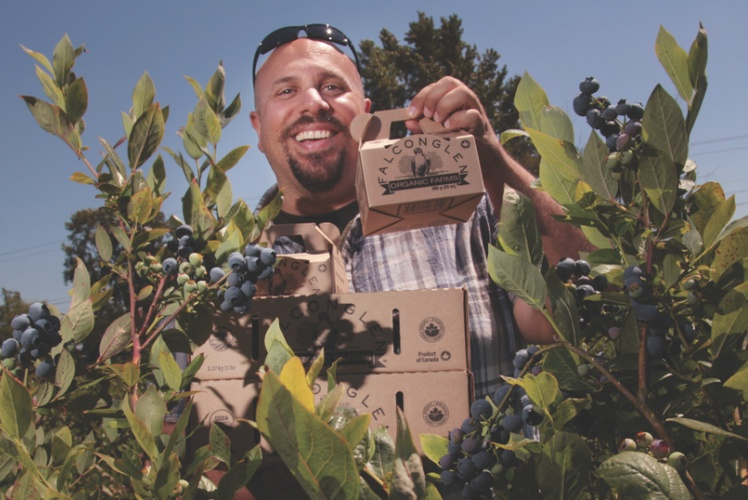 Photo of Paul Falcon in Blueberries Plantation